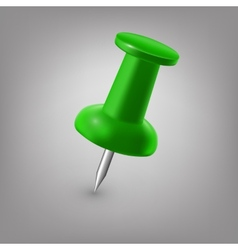 Green push pin isolated vector image