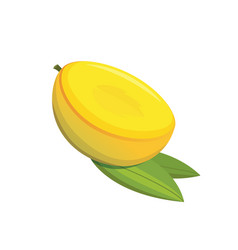 mango yellow fruit isolated vector image