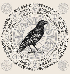 Banner with hand-drawn raven and magical symbols vector