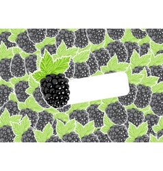 berry vector image
