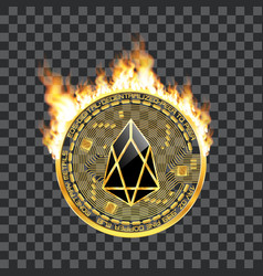 crypto currency eos golden symbol on fire vector image vector image