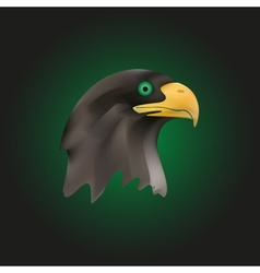 Head of brown majestic eagle bird eps10 vector