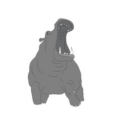 Hippopotamus stands drawing color vector