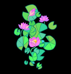 lotus flower blooming in the pond vector image