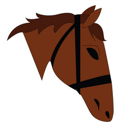 On a brown horse head on white background vector