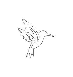 one single line drawing cute hummingbird vector image