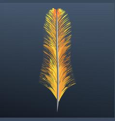 orange feather icon realistic style vector image