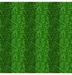 Striped green grass field seamless texture vector