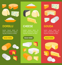 cheese product dairy banner vecrtical set vector image