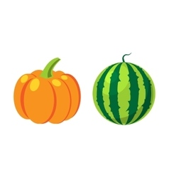 Fresh orange pumpkin and watermelon isolated vector