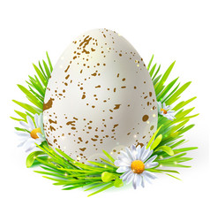 white egg with spots on grass vector image vector image