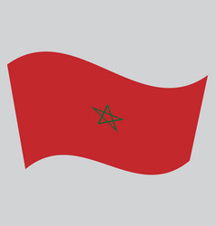 flag of morocco waving on gray background vector image vector image