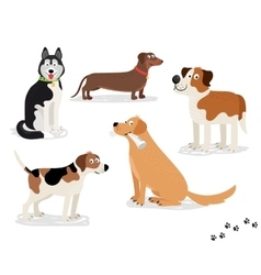 Happy dog characters on white background vector