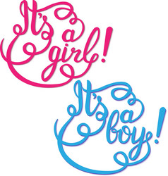 Its a girl boy lettering Baby shower vector