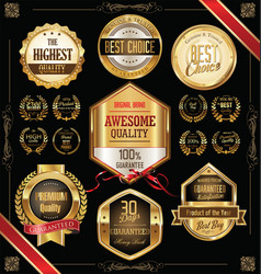 quality golden badges and labels collection 2 vector image