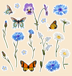 set spring flowers and butterfly elements vector image