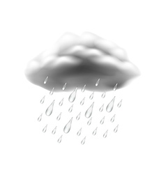 Rain icon isolated on white vector image vector image