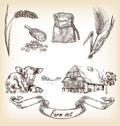 Cow farm house sack grain meal wheat vector