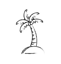 Figure palm with coconuts and leaves vector