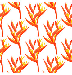 Heliconia flower background tropical vector