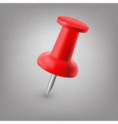 Red push pin isolated vector image