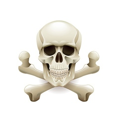 Skull crossbones isolated on white vector image