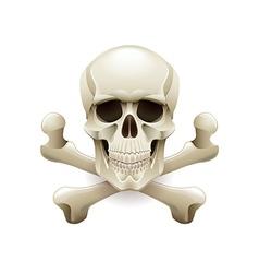 Skull crossbones isolated on white vector image