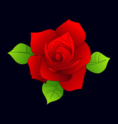 collection roses on white background icon rose vector image