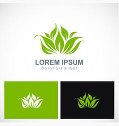 green leaf organic botany logo vector image