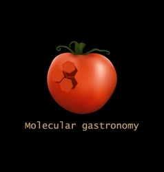 Stylized tomato structure Molecular gastronomy vector image
