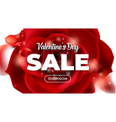 valentines day sale background with flower rose vector image