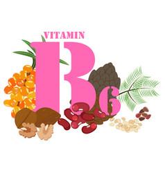 Vitamin b6 healthy nutrient rich food vector