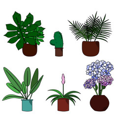 set of cute flowers in pot cartoon style vector image vector image