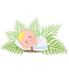Sleep Baby In Fern vector image vector image