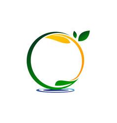 emblem template blank leaf water vector image