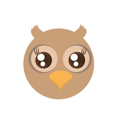 Kawaii face owl animal fun vector