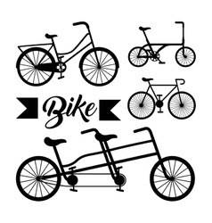 pattern bicycle poster icon vector image