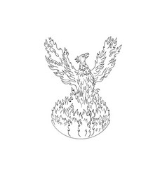 Phoenix rising fiery flames black and white vector