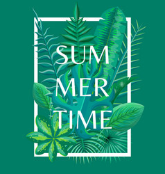 summertime background tropical green plants vector image