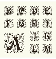 Vintage set capital letters Monograms and font vector image vector image
