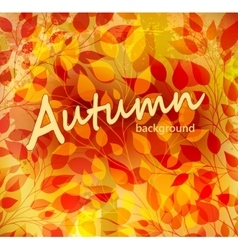 Bright autumn abstract background vector image vector image