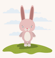 White background with color scene cute rabbit vector