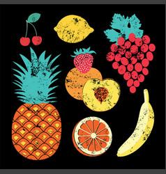 collection retro fruits vector image