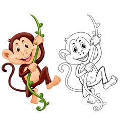 Drafting animal for monkey on vine vector