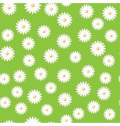 Field daisies vector