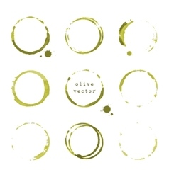 Olive round stains and blots vector image