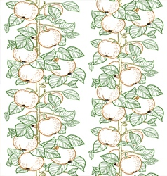 Seamless line pattern of the branches of the apple vector image