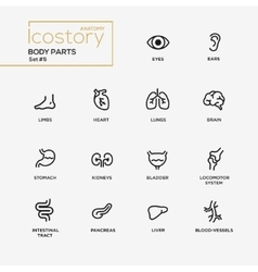 Body parts modern simple thin line design icons vector