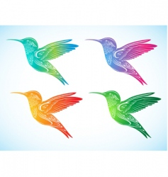 Colorful hummingbirds vector