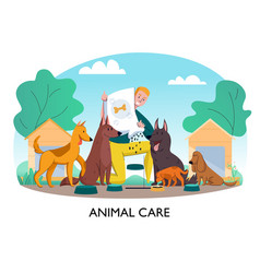 feeding homeless dogs composition vector image